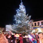 Sponsor Christmas trees in Chippenham?