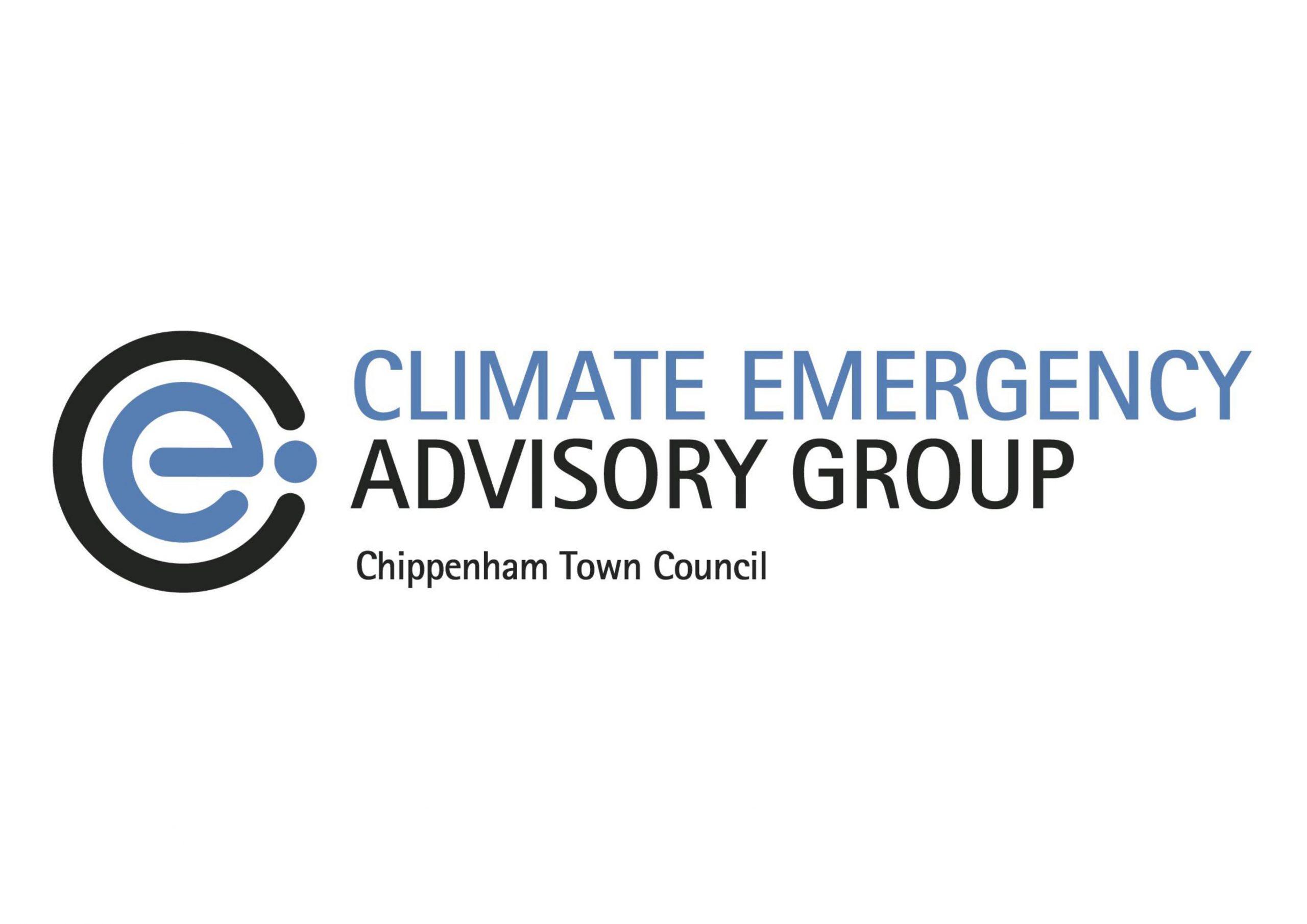 Blue colour 'e' with black around it, blue writing of Climate Emergency, black writing of Advisory Group