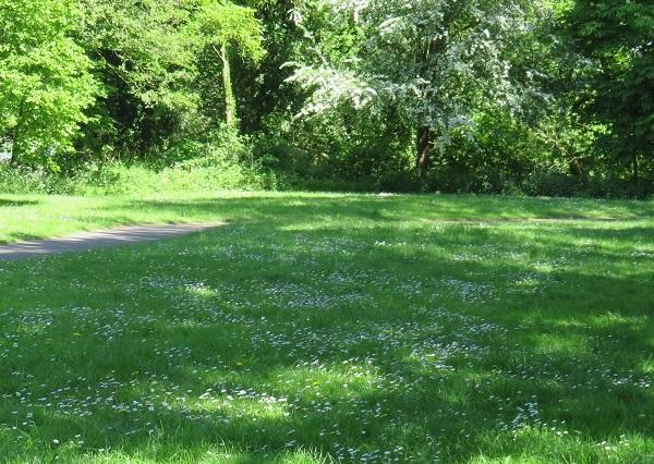 Monkton Park consultation events