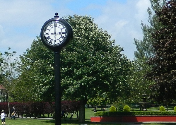 Black clock in the middle of John Coles Park with a white clock face and numbers written in roman numerals. Greenery in the background and a blue sky
