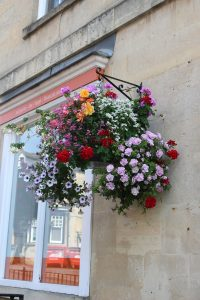 pink, yellow and orange flowers in a hanging basket in the High Street
