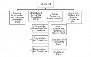 Committee structure flow chart